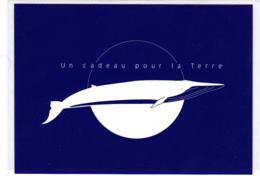 Carte (totalement Imprimée), La Baleine Bleue, Un Cadeau Pour La Terre, Ballena Whale - Animaux & Faune