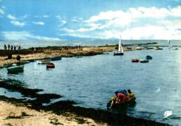 Prefailles Port De La Pointe Saint Gildas    CPM Ou CPSM - Préfailles