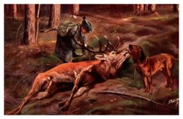 Dog  , Hunting Dog , Dead Stag , Boy - Dogs