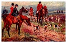Dog  ,  The Hunting Field  , ( Fox Hunt ) - Dogs