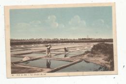 Cp, Agriculture,17 , ILE DE RE ,la Récolte Du Sel ,  Vierge - Landbouw