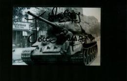 WW2 Front De L'Est L'Armée Rouge Dans Berlin - Riproduzioni
