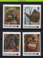 Nfd02s FAUNA AAP APEN URANGUTAN MONKEYS MAMMALS APES AFFEN SINGES PAPUA NEW GUINEA 2013 PF/MNH # - Affen