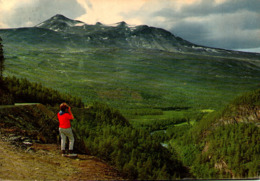 Norvège - Utsikt Fra Den Nya Veien Inn Junkerdalen - Norvège