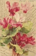 Mazzo Di Fiori, Illustrazione, Catharina Klein Illustratore - Klein, Catharina
