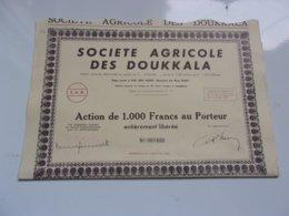 AGRICOLE DES DOUKKALA (domaine Des Beni Hellal) MAROC - Actions & Titres