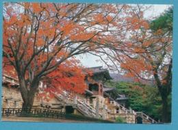 Whole Sights Of Pulkuk-sa Temple In KYONGJU (Gyeongju) - Corea Del Sud