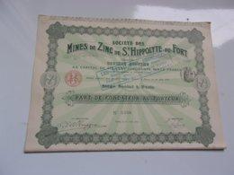 MINES DE ZINC DE SAINT HIPPOLYTE DU FORT (fondateur) Imprimerie RICHARD 1911 - Actions & Titres