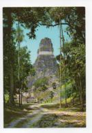 Guatemala: Templo Gran Jaguar, Tikal Peten, Temple (19-1726) - Guatemala