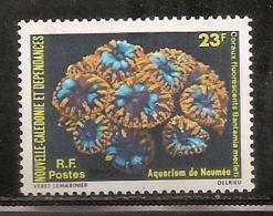 NOUVELLE CALEDONIE  NEUF SANS TRACE DE CHARNIERE - Nueva Caledonia