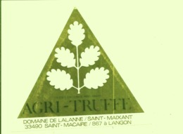 Autocollant Brillant Doré Adhésif Publicitaire Truffes Truffe Plants Truffiers Tartufo Inra Agri-truffe Pépinière - Autres