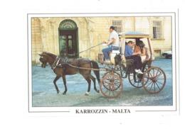 Cpm - Malte - Malta - KARROZZIN - Attelage Cheval Calèche Fouet Animation - 253 - Malte