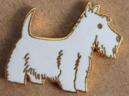 CHIEN BLANC  -WHITE DOG - WEISS HUND - WEST HIGHLAND WHITE TERRIER  -      (22) - Animales