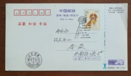 China 1994 Comet Shoemaker-Levy 9 Collision With Jupiter Jinan Astronomy Astronomical Observation PMK Used On Card - Astronomy