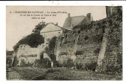 CPA-Carte Postale-France - Ferrières-en-Gâtinais - Les Arènes En 1925 VM6483 - Montargis