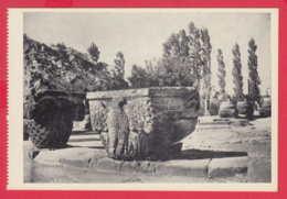 248404 / Yerevan - ZVARTNOTZ , Armenia Armenien Armenie - Armenia