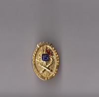 Pin's Armée / Insigne 15ème RA Régiment D'Artillerie (doré) Hauteur: 2,2 Cm - Militaria