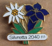 FLEURS EDELWEISS & GENTIANE  - BLUMEN - SILVRETTA  2040 M -      (22) - Pin