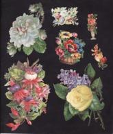 Découpis   Lot De 54     Fleurs        14.4 X 9 Cm Le Plus Grand - Découpis