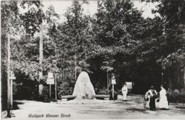 Repro Foto Dresden Weißer Hirsch Waldpark Wald Park Gedenkstein Konzertplatz A Stechgrundstraße Diebsweg Bühlau - Riproduzioni