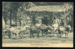 GUSTAV HAGENBECK'S  Indien - India