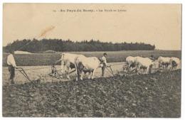 Les Bœufs Au Labeur  - Au Pays Du Berry - Landbouw