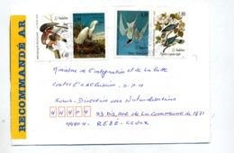 Lettre Recommandée Montrouge Sur Oiseau - Marcophilie (Lettres)