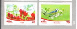 Privatpost Brief Und Mehr Münster: Markenpaar Tulpe - Blaumeise, Flowers, Birds - [7] Federal Republic