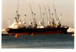 Bulk Carrier - FERNANDO PESSOA - Ex Michel Delmas - Built 1987 - 17.079 BRT - Cargos