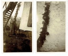 GHISTEL - 2 Kleine Foto's Bij De Molen 10,5 X 6,4 Cm - Dekker Licht De Vang - + Krantenknipsel Molen Wieksysteem Dekker - Gistel
