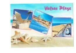 Cpm - 34 - VALRAS PLAGE - Multivues Escargot De Mer Coquillage Sable étoile De Mer - Monument - Altri Comuni