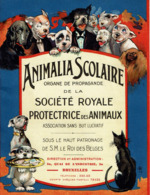 1927 Chien Bonzo G.E. Studdy Like, Superbe Illustration Animalia Scolaire - Société Royale Protectrice Des Animaux - Publicités