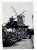 Aschendorf - Papenburg - Bez. Osnabrück - Kleine Foto 9 X 6 Cm - Molen - Mühle - Papenburg