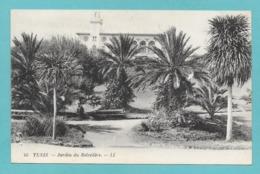 TUNIS JARDIN DU BELVEDERE - Tunisia