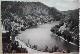 Lilafured - Hamori Teich /  Pond  - Early 60's - Hungary