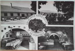 Balatonfured - Tolgyla Scarda - Oak Inn  - Early 60's - Hungary