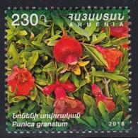 1.- ARMENIA 2018 Flora And Fauna Of Armenia - Punica Granatum - Frutas