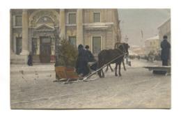 Russia - Horse, Sledge, Christmas Tree - 1912 Used Postcard - Russia