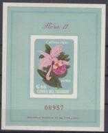 Paraguay 1963 Flowers Flora Mi#Block 45 Mint Never Hinged - Paraguay