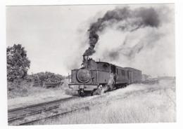 CPM VOIR DOS 80 Train De Noyelles Arrivant à St Valéry Canal En 1955 Locomotive à Vapeur N°3.853 - Saint Valery Sur Somme