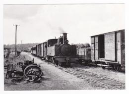 CPM VOIR DOS 80 Train Mixte Locomotive Vapeur 3853 Arrivée De Cayeux à St Valéry Canal En 1955 Wagon Couvert - Saint Valery Sur Somme