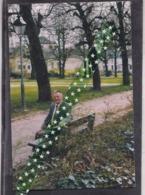 Denis Dedonder-Laurier, Geboren Ronse 1932, Overleden 2003 - Obituary Notices