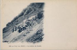 BOLIVIA , TARJETA POSTAL NO CIRCULADA ,  DE LA PAZ AL BENI - LA SUBIDA DE SORATE - Bolivia