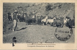 1909 BOLIVIA , TARJETA POSTAL MAT. SUCRE ,  COMPAÑIA HUANCHACA DE BOLIVIA , LLAMAS , GANADO , GANADERIA , MINERIA - Bolivia