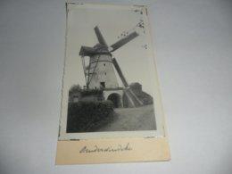 Ninove Denderwindeke Molen Foto - Ninove