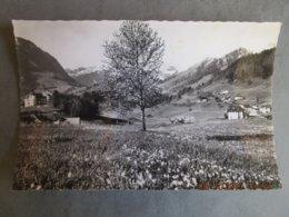 CP Suisse Fribourg - LES SCIERNES D'ALBEUVE En Gruyère Rochers De Nays Dt De Jaman 1950 - FR Fribourg