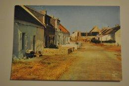 56 Morbihan Ile De Hoedic La Rue Principale Du Village - France