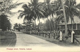 Malay Malaysia, LABUAN VICTORIA BORNEO, Principal Street, Palm (1910s) Postcard - Malaysia