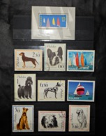 A109 POLOGNE LOT OF 10 DIFFERENT STAMPS - Unclassified