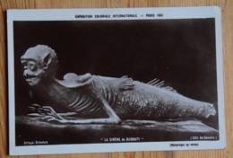 Le Sirène De Djibouti - Exposition Coloniale Paris 1931 - Afrique Orientale - Somalis - Historique Au Verso - (n°16139) - Exposiciones